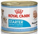 Роял Канин,  Стартер мусс (Royal Canin, Starter Mousse) (Консерва)
